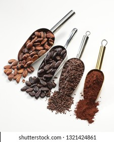 Scoops with cocoa beans and cocoa powder isolated on white background