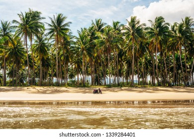 Scooter on secluded Long Beach at San Vincente with palm trees, Palawan, Philippines
