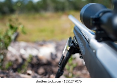 Scoped hunting rifle with bipod resting on a downed tree and looking down range