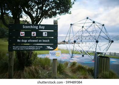 Scorching Bay in Wellington of New Zealand