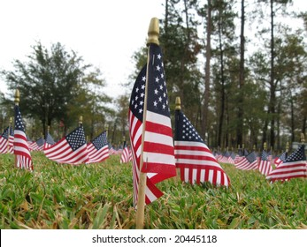 Scores of American Flags Waving Proudly for Veteran's Day