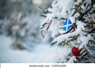 Scotland flag. Christmas background outdoor. Christmas tree covered with snow and decorations and Scottish flag. New Year / Christmas holiday greeting card.