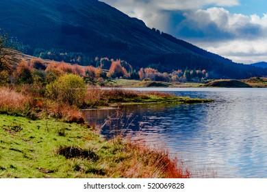 Scotland nature: islands, highlands, meadows
