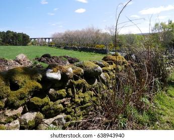Scottish countryside and bridge