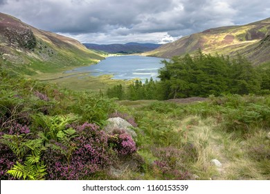 Scottish landscape. Loch Lee in Angus, Aberdeenshire, Scotland. Cairngorms, south of the Grampian Mountains.