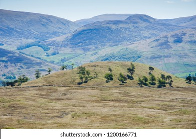 Scottish Landscape - SE view from Meall Greigh