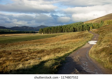 Scottish rural landscape. Cairngorms National Park, Royal Deeside and Loch Muick area. Aberdeenshire, Scotland, United Kingdom.