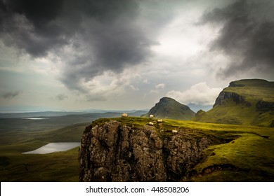 Scottish sheep on the ledge of a cliff on the Quiraing, Isle of Skye, Scotland, UK with lush, saturated green grass, dramatic clouds and valley as well as hill and mountain peaks in background
