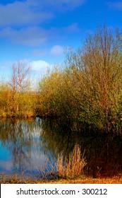 scottish stillwater