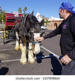 Scottsdale, Arizona/ USA - February 2016:  Man with scarf on head, strokes nose of draft horse hitched to red stagecoach used for tours of old Scottsdale, Arizona.