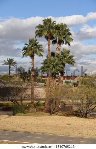 Dating servizio Scottsdale AZ
