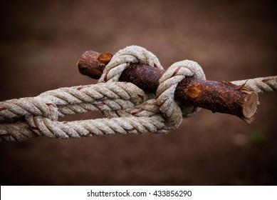 Scout knots Scout knot Wood