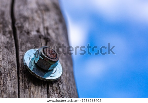 Screw in a wooden board. Assembly works. Woodwork. Metal nut for screw.