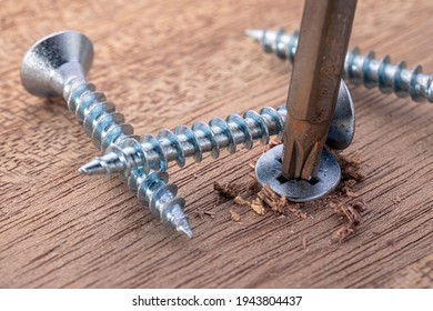 Screwdriver screw in a wood oaks plank. Self-tapping screw for PZ3 bit. Screws macro photo. Construction abstraction. Industrial background.