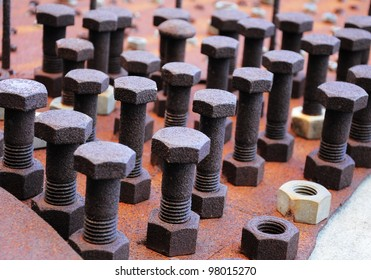 Screws arranged in close-up