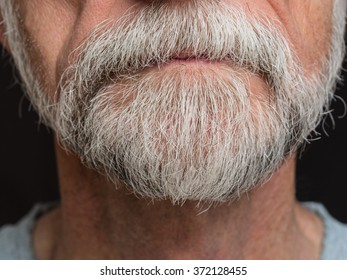 Scruffy grey beard on senior male with mustache growing over lips.