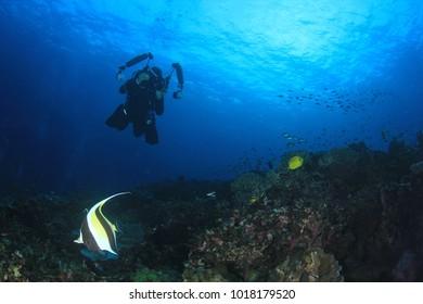 Scuba dive underwater ocean reef