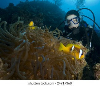 Scuba Diver and Anemonefish