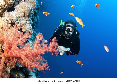 Scuba diver with bright red coral and tropical fish