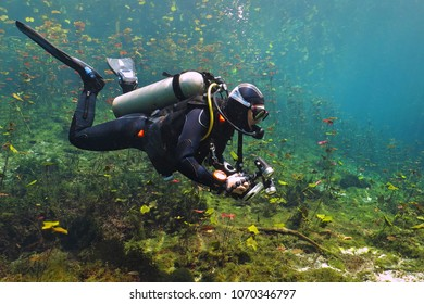 Scuba diver in the cenote lake. Fresh water pond with scuba diver photographer. Green water with aquatic plants.