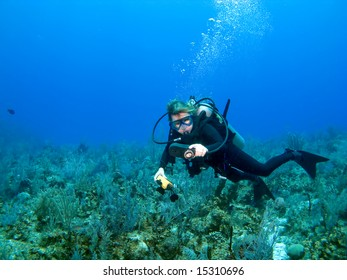 Scuba Diver Checking Gauges in the Caribbean