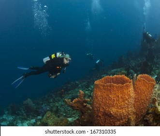 A Scuba Diver checks out the sponges in St. Lucia