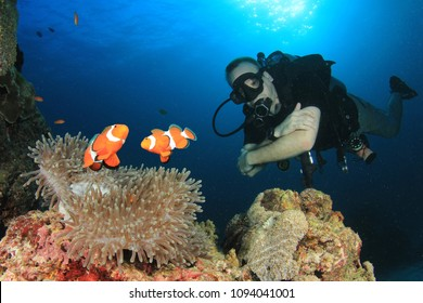 Scuba diver and Clownfish (Anemonefish) fish