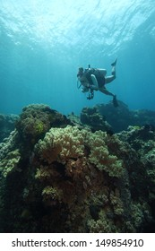 Scuba diver and coral reef in crystal clear water