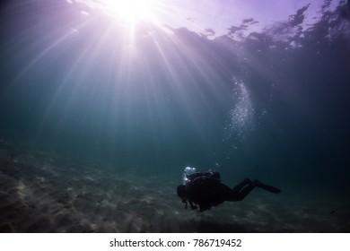 Scuba Diver Daydream