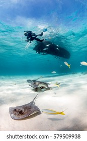 A SCUBA diver descends from a boat onto a sandy lagoon full of Stingrays