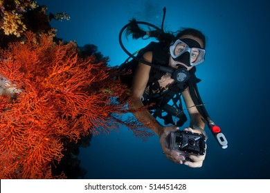 Scuba diver doing underwater photography