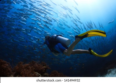 Scuba diver finning towards school of Jack fish in a tropical sea