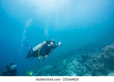 Scuba diver following scad fish in coral reef of Dimakya island, Palawan.