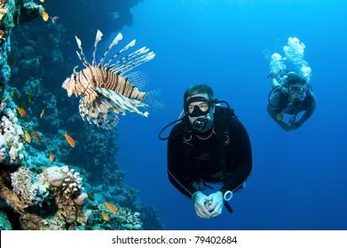 Scuba diver looks at Lion fish