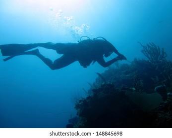 SCUBA Diver near a coral head