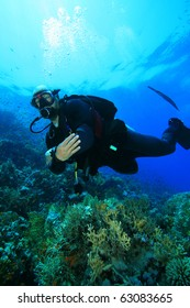 Scuba Diver on coral reef followed by a Cornetfish