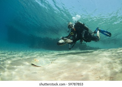 scuba diver on underwater scooter with sting ray