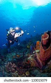 A scuba diver photographing the underwater world