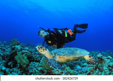 Scuba Diver and Sea Turtle