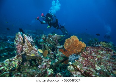 Scuba diver. Similan islands. Andaman sea. Thailand.