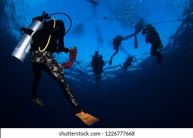 scuba diver with surface marker bouy