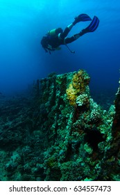 Scuba diver swim over the ribs of very old ship wreck