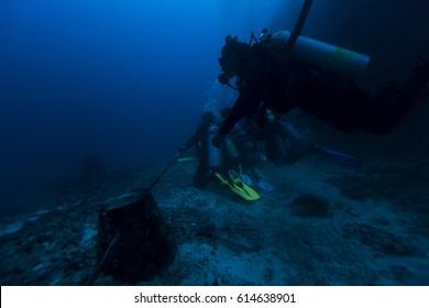 Scuba diver swim through coral reef, Malapascua.