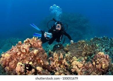 Scuba Diver taking pictures on a Hawaiian Reef