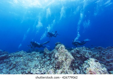 Scuba diver in tropical coral reef.