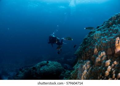 scuba diver under deep blue sea