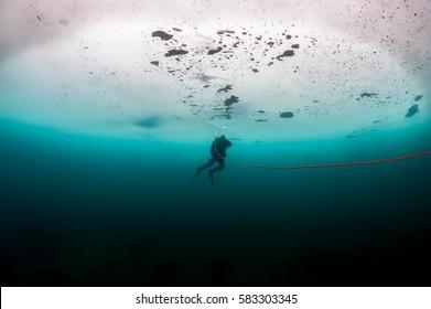 Scuba diver under the ice