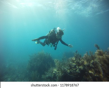 Scuba diver under water in the ocean