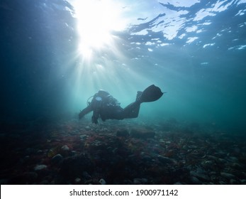 A scuba diver underwater on a rebreather swims with sunbeams overhead off Vancouver Island, British Columbia, Canada.