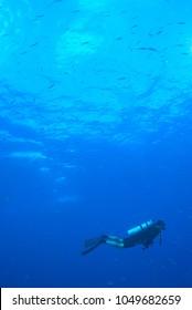Scuba Diver underwater world in andaman sea, Thailand